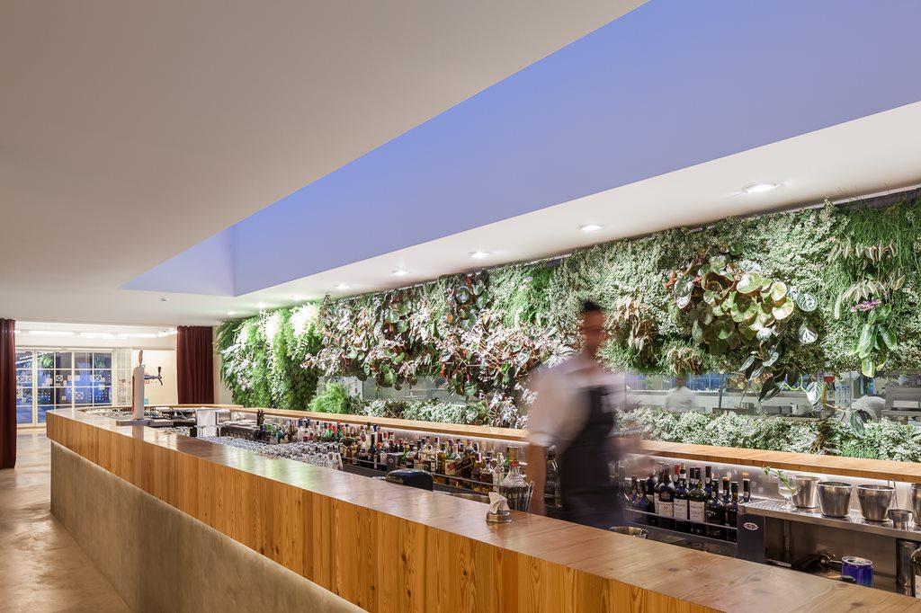 Zona do bar e jardim vertical ao fundo (Foto: Divulgação)